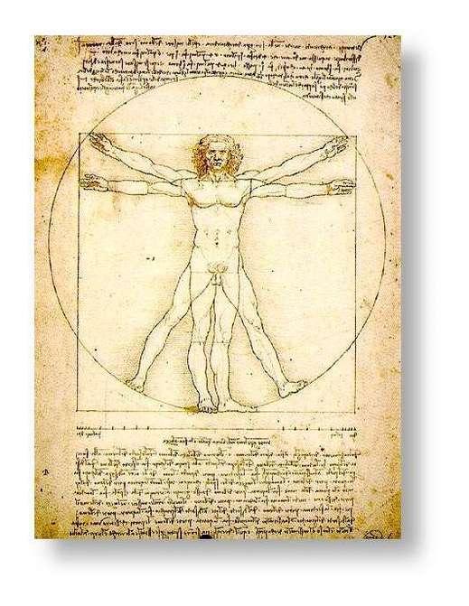 Léonard de Vinci, L'homme de Vituve