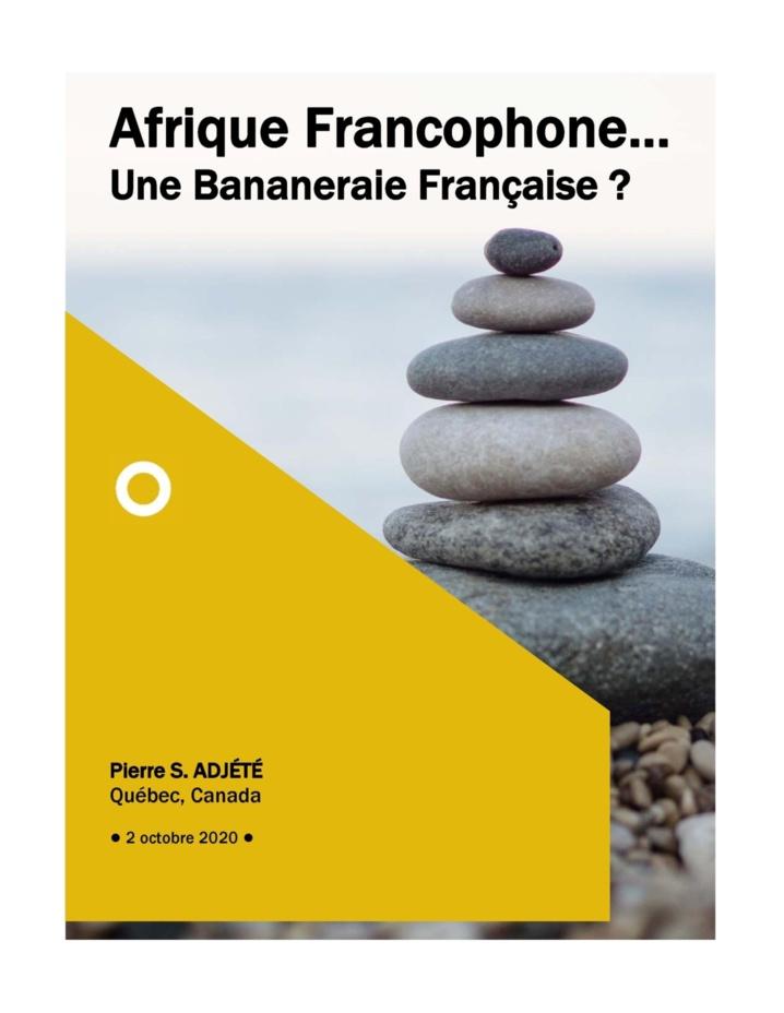 Afrique Francophone… Une Bananeraie Française ?